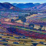 Australian Eye - Abstract Landscape Art