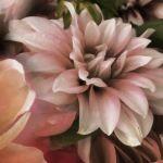 Shadow Blooms - Moody Floral Art