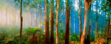 Deep Forest Dawn - Fine Art Print